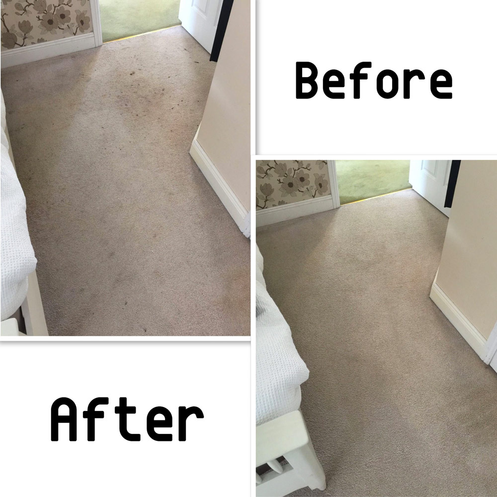 carpet deodorising company