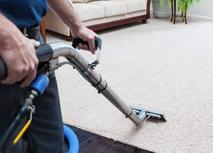 fast drying carpet clean in Portsmouth