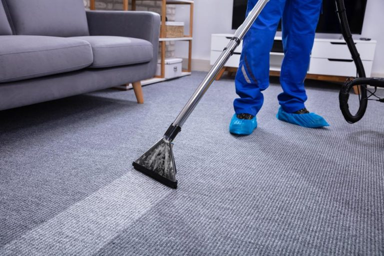why have your carpets professionally cleaned