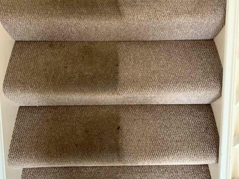 stair carpet cleaning service
