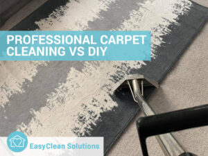 professional carpet cleaning vs diy